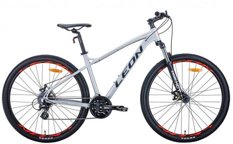 Велосипед 2021 Leon TN-90 29 DD (OPS-LN-29-092) 18(р) серый